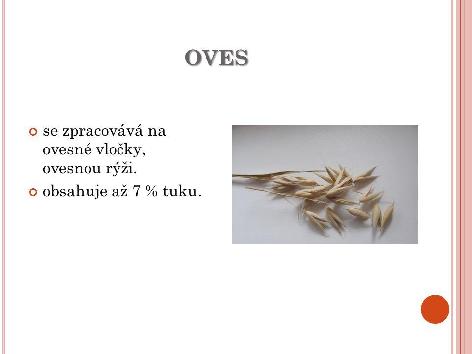 oves se zpracovává na ovesné vločky, ovesnou rýži.