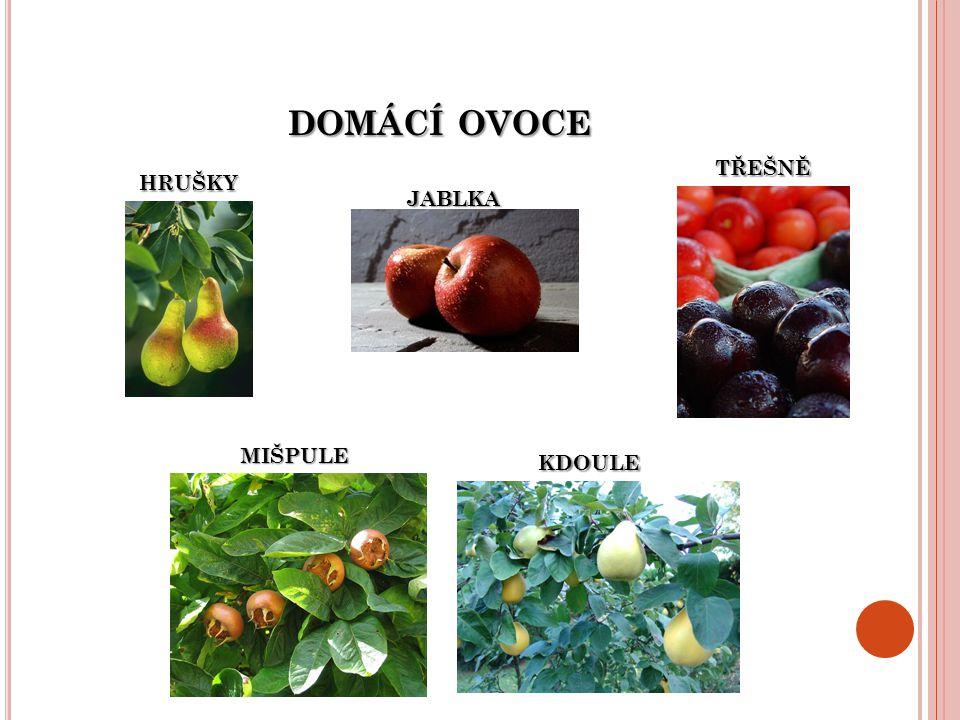 domácí ovoce třešně hrušky jablka mišpule kdoule