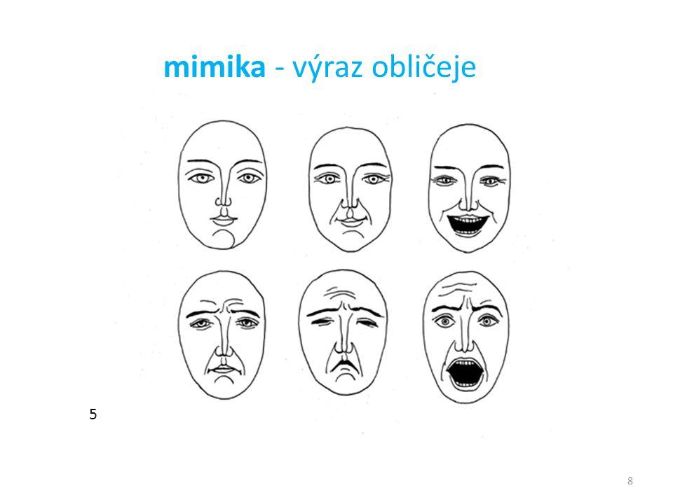 mimika - výraz obličeje