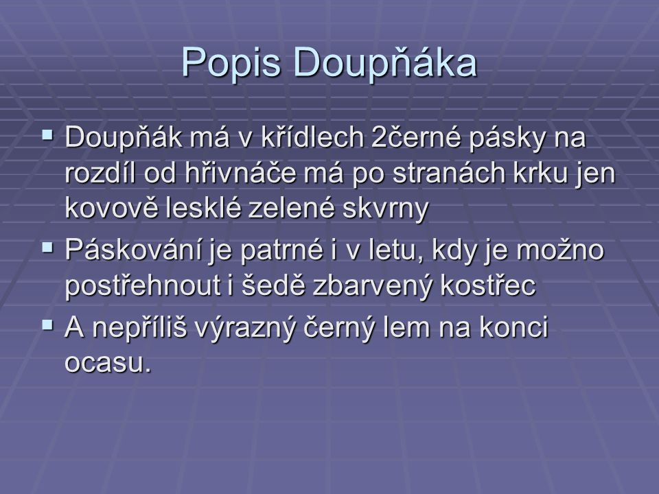 Popis Doupňáka Doupňák má v křídlech 2černé pásky na rozdíl od hřivnáče má po stranách krku jen kovově lesklé zelené skvrny.