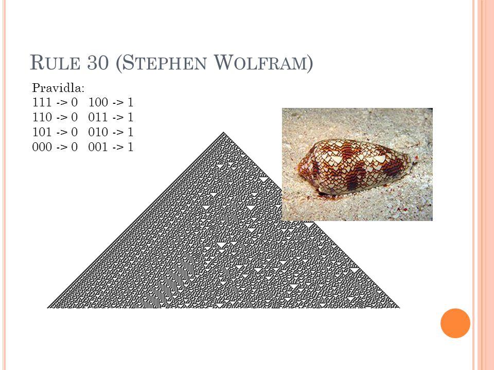 Rule 30 (Stephen Wolfram)