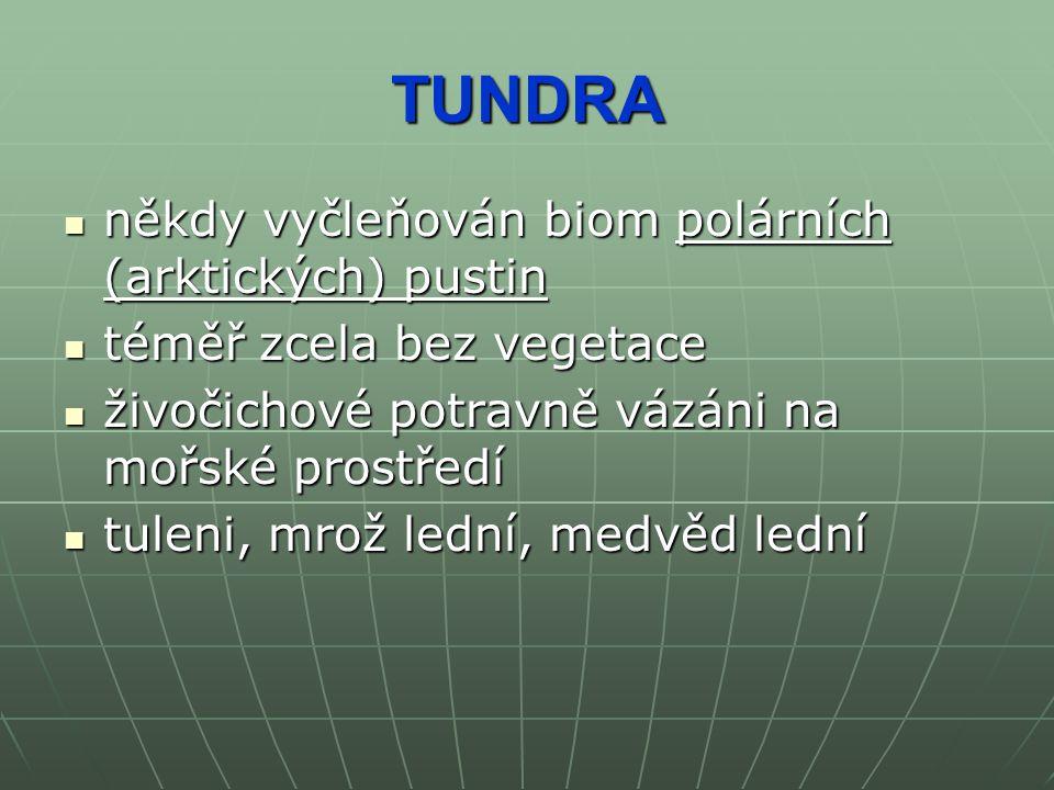 TUNDRA někdy vyčleňován biom polárních (arktických) pustin