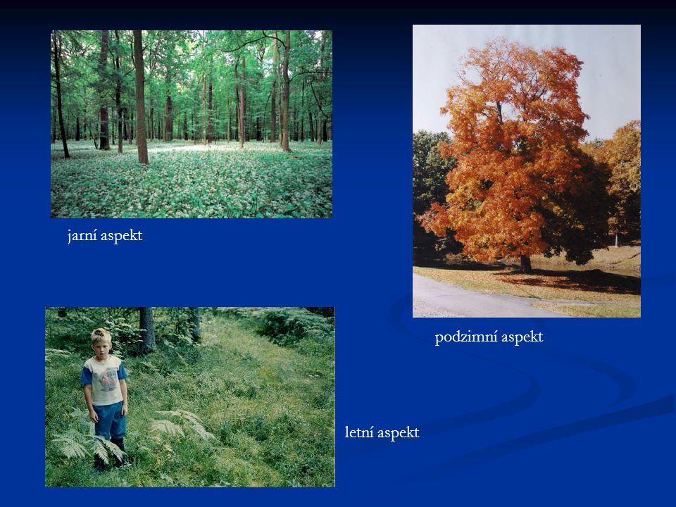 jarní aspekt podzimní aspekt letní aspekt