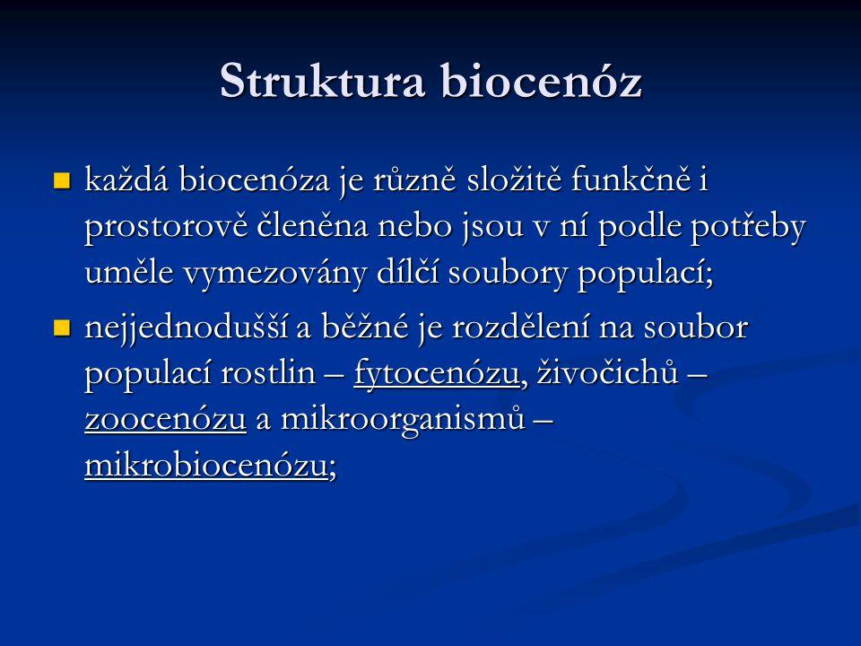 Struktura biocenóz