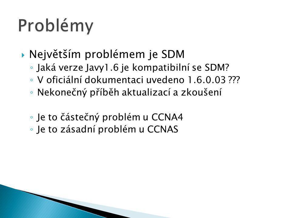 Problémy Největším problémem je SDM