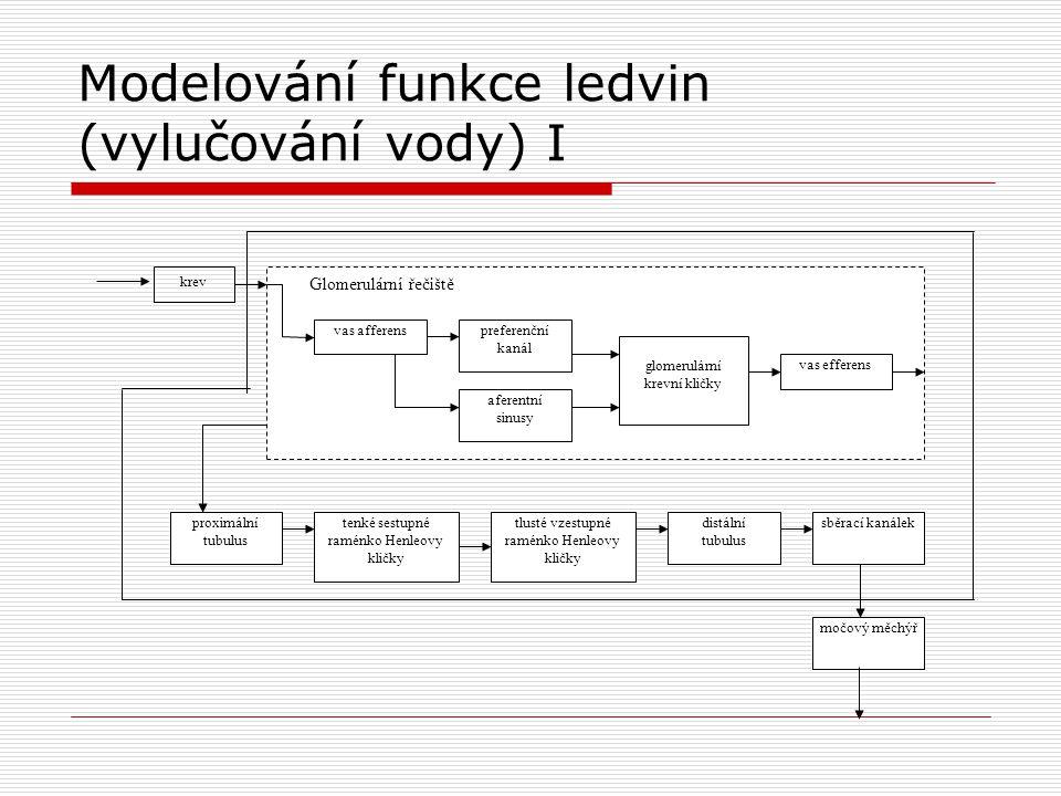 Modelování funkce ledvin (vylučování vody) I