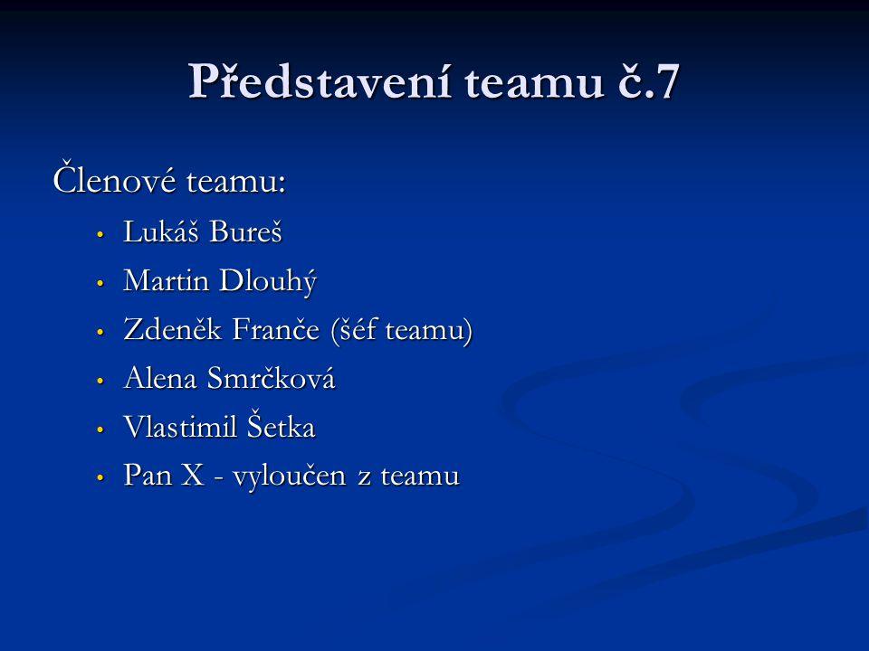 Představení teamu č.7 Členové teamu: Lukáš Bureš Martin Dlouhý