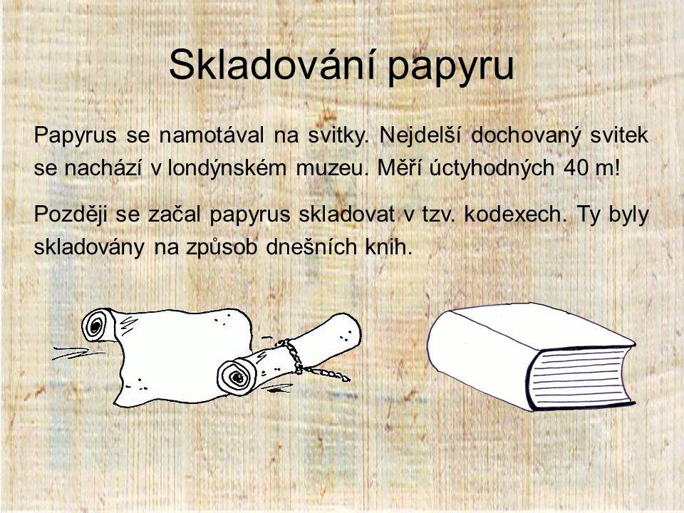 Skladování papyru Papyrus se namotával na svitky. Nejdelší dochovaný svitek se nachází v londýnském muzeu. Měří úctyhodných 40 m!
