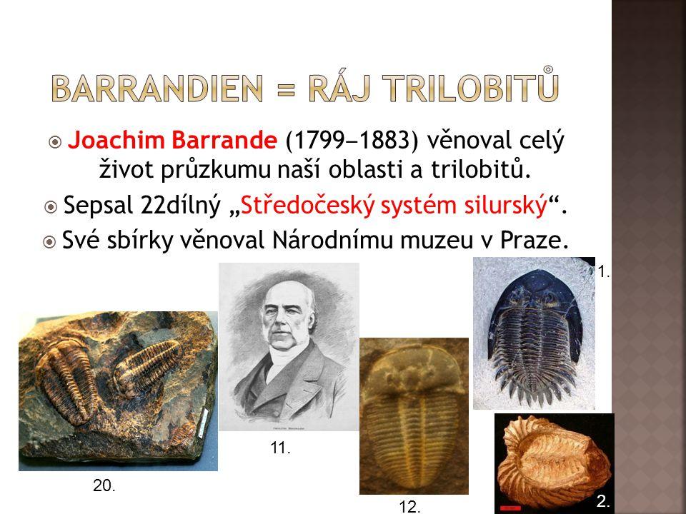 Barrandien = ráj trilobitů
