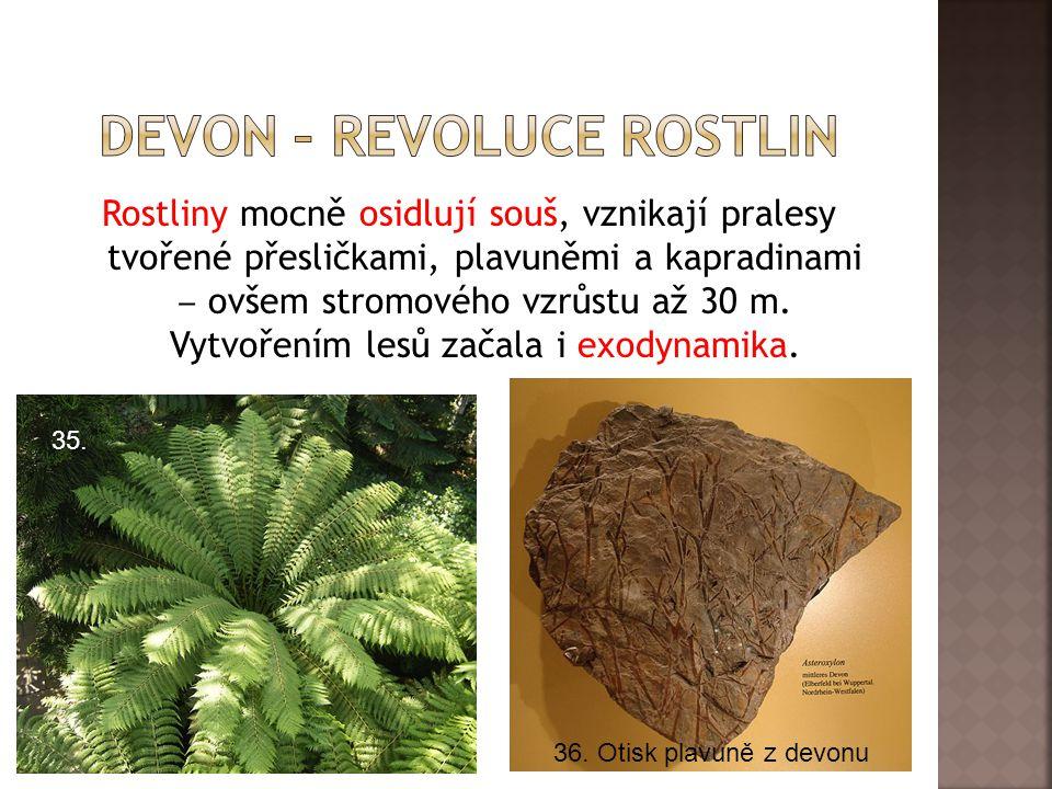 Devon – revoluce rostlin