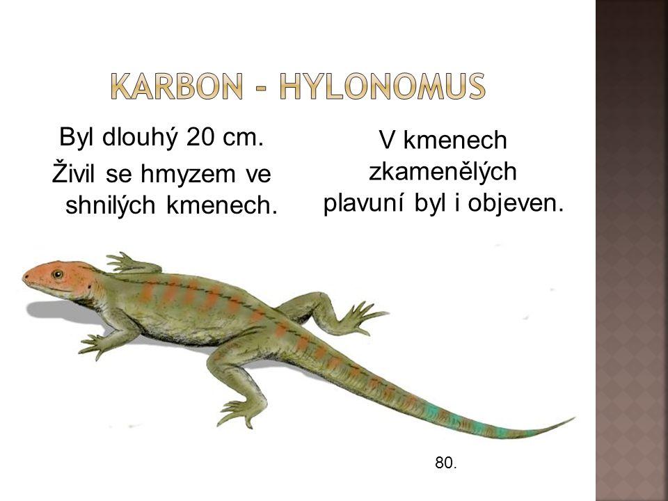 Byl dlouhý 20 cm. Živil se hmyzem ve shnilých kmenech.
