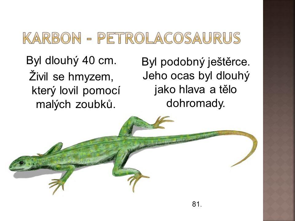 Karbon - petrolacosaurus