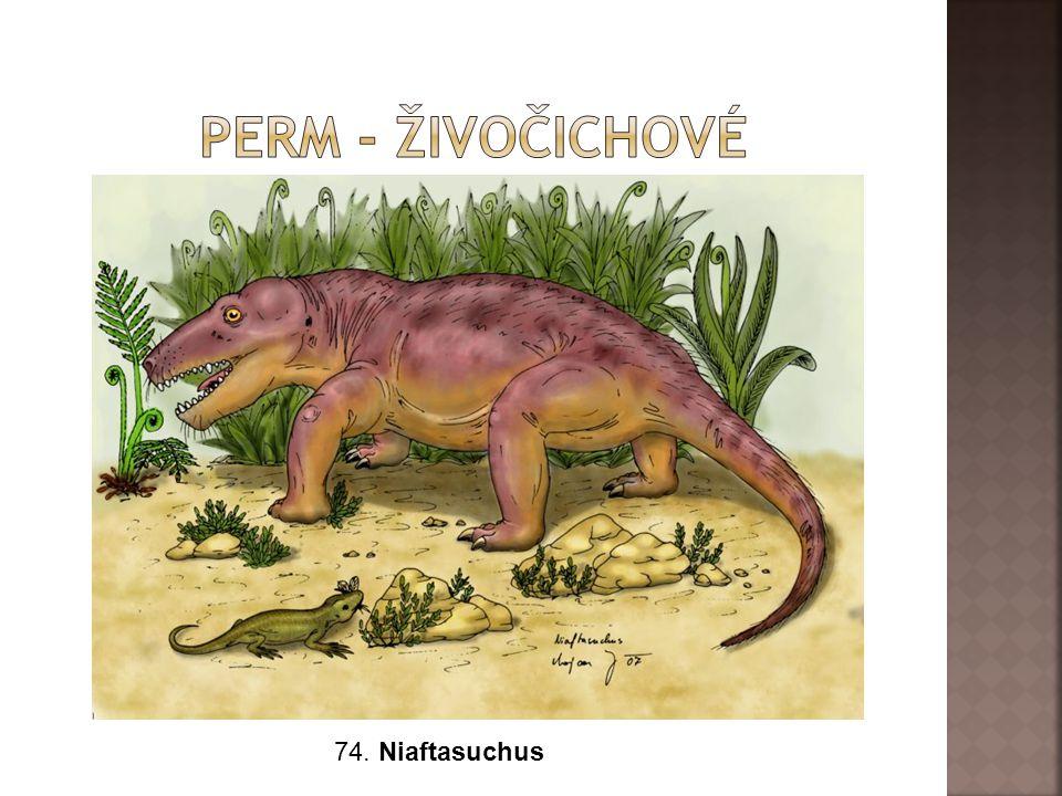 Perm - živočichové 74. Niaftasuchus