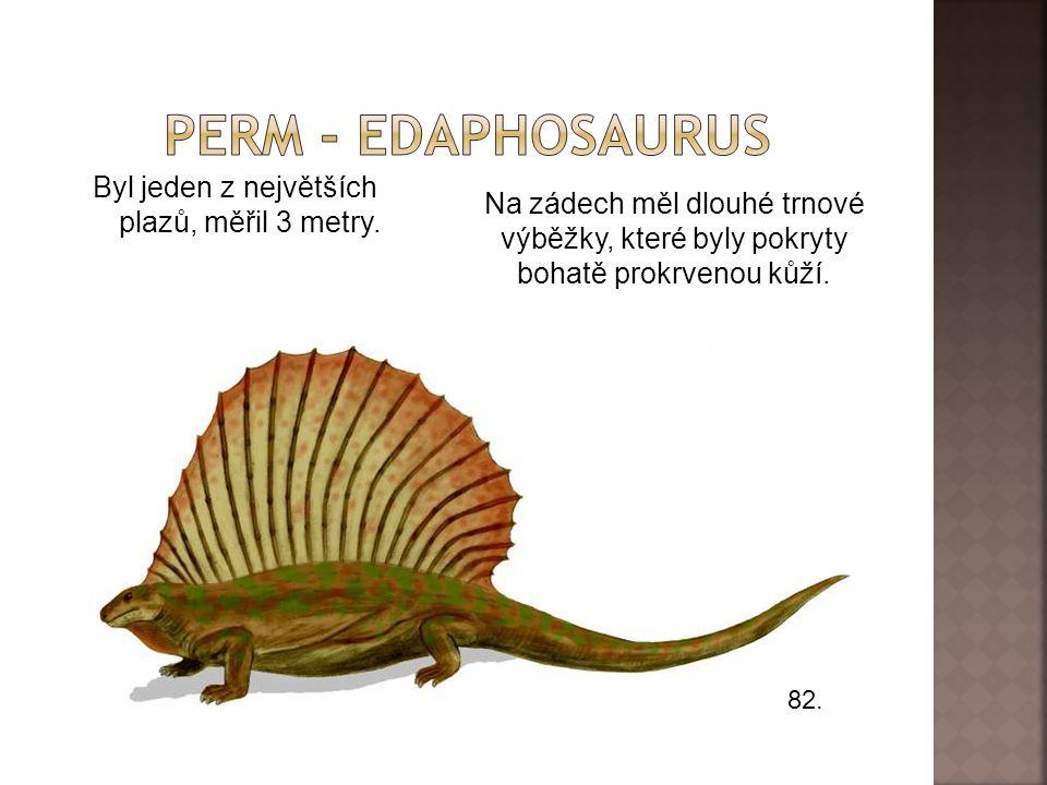 Perm - edaphosaurus Byl jeden z největších plazů, měřil 3 metry.