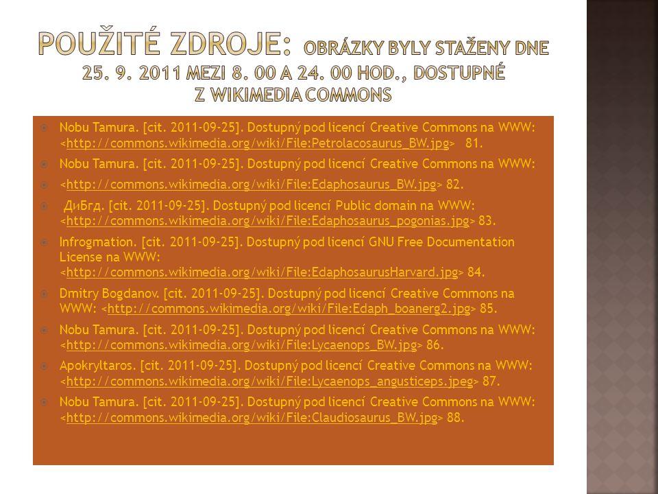 Použité zdroje: Obrázky byly staženy dne 25. 9. 2011 mezi 8. 00 a 24