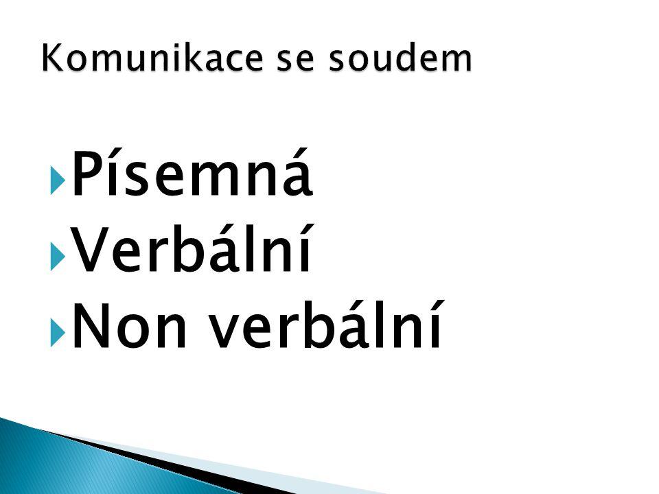 Komunikace se soudem Písemná Verbální Non verbální