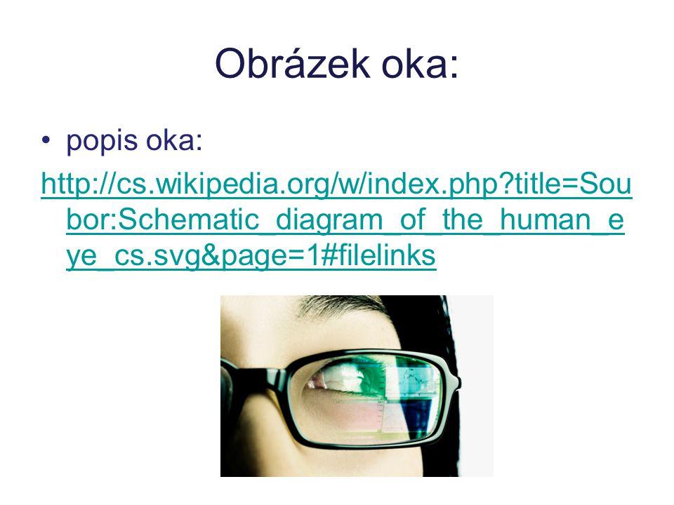 Obrázek oka: popis oka: