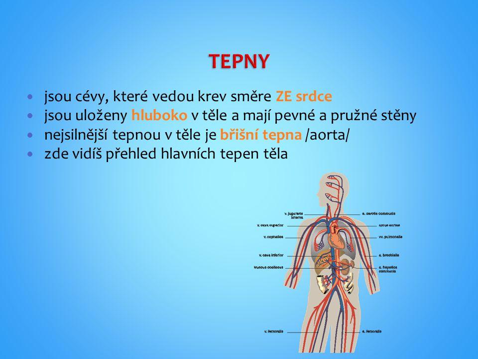 TEPNY jsou cévy, které vedou krev směre ZE srdce