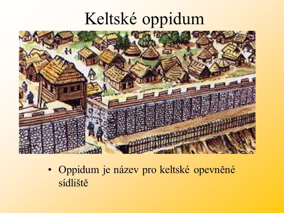 Keltské oppidum Oppidum je název pro keltské opevněné sídliště