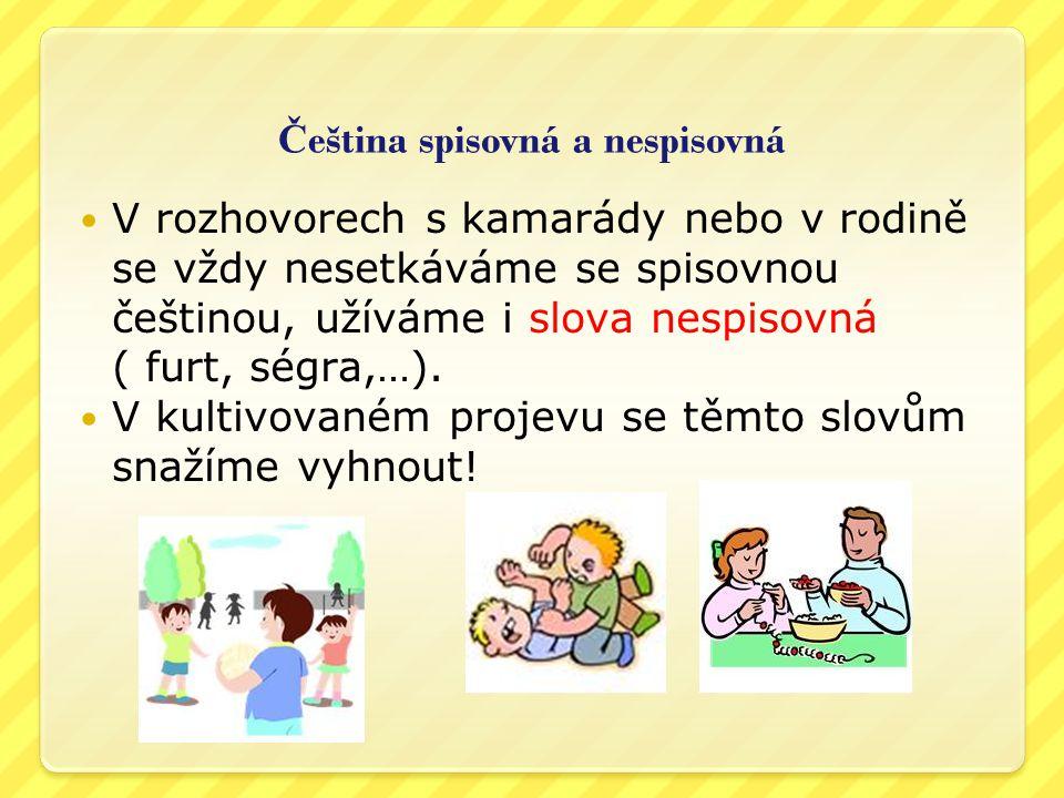 Čeština spisovná a nespisovná