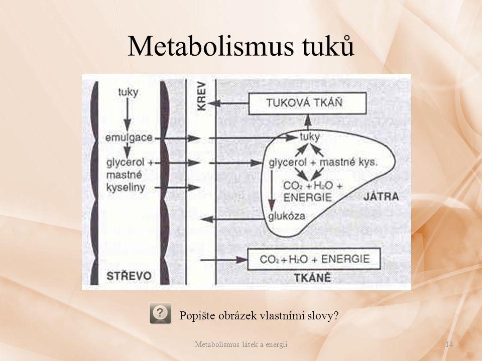 Metabolismus tuků Popište obrázek vlastními slovy