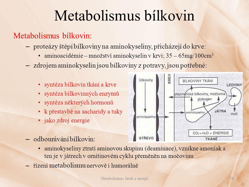 Metabolismus bílkovin