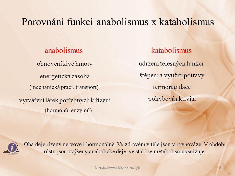 Porovnání funkcí anabolismus x katabolismus