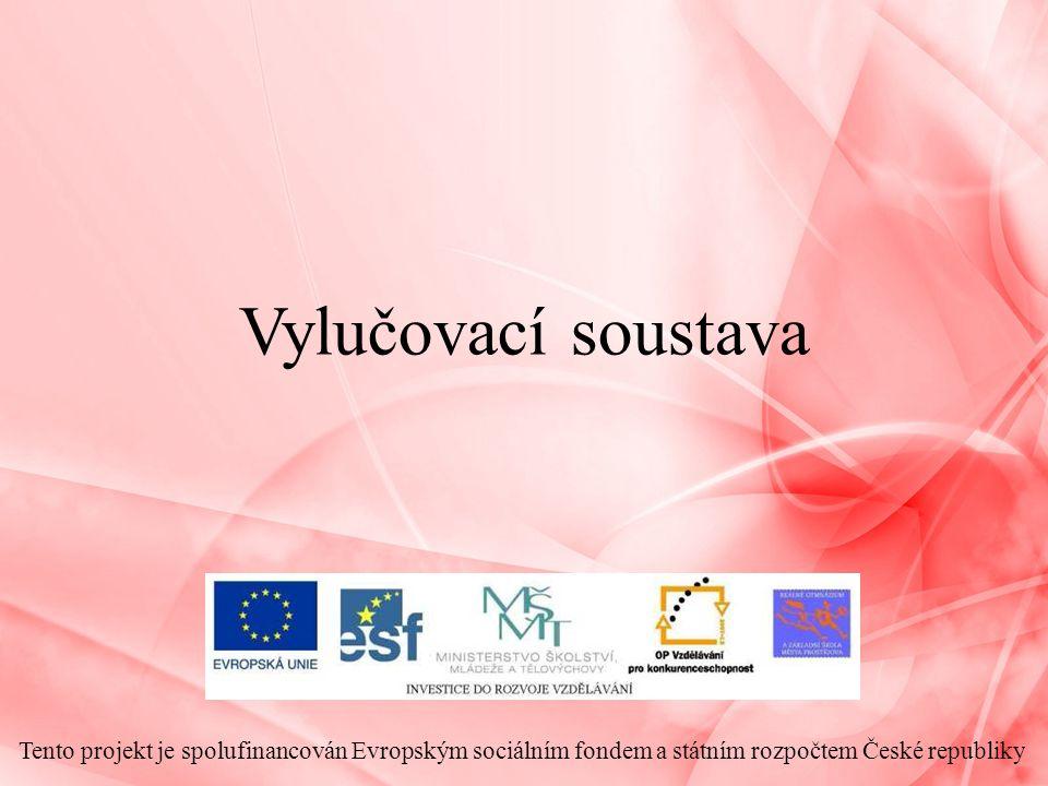 Vylučovací soustava Tento projekt je spolufinancován Evropským sociálním fondem a státním rozpočtem České republiky.