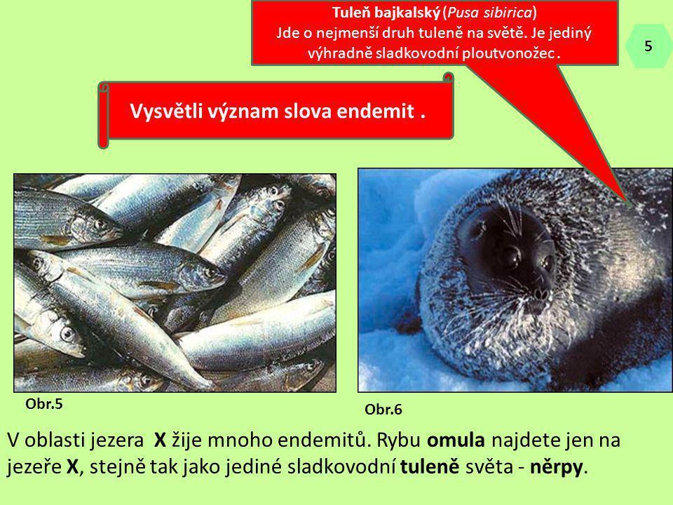 Vysvětli význam slova endemit .