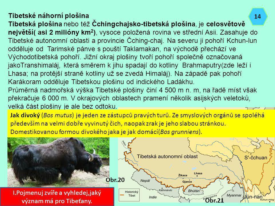 I.Pojmenuj zvíře a vyhledej,jaký význam má pro Tibeťany.
