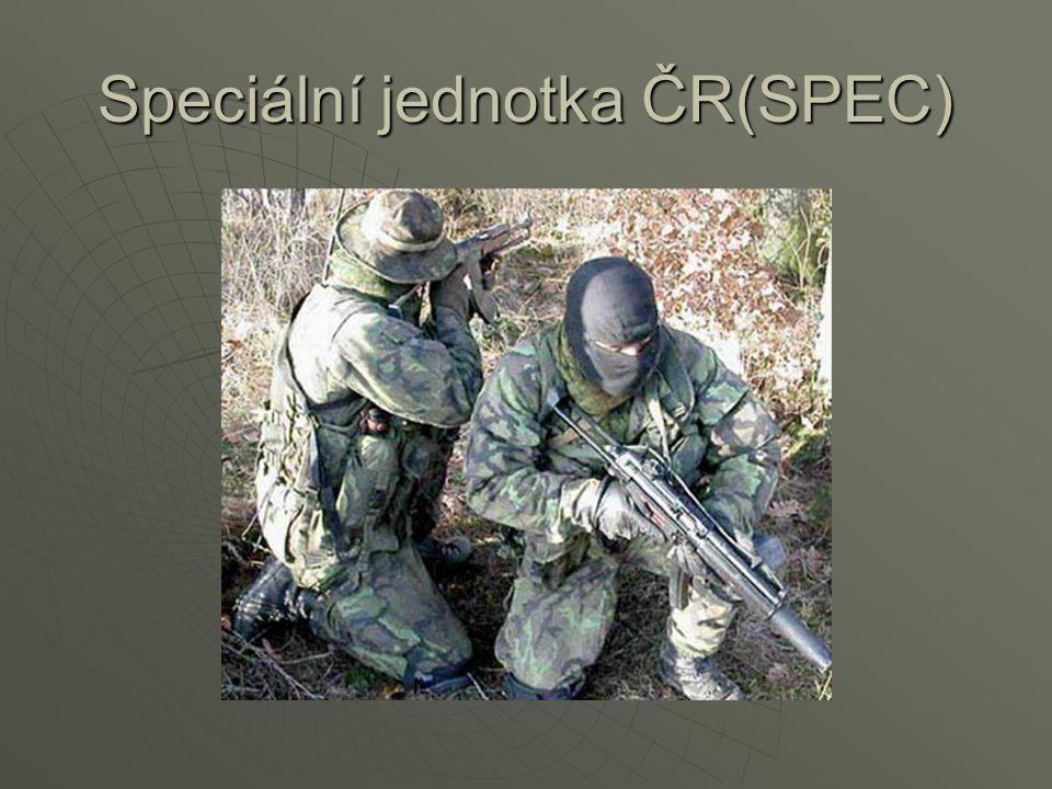 Speciální jednotka ČR(SPEC)