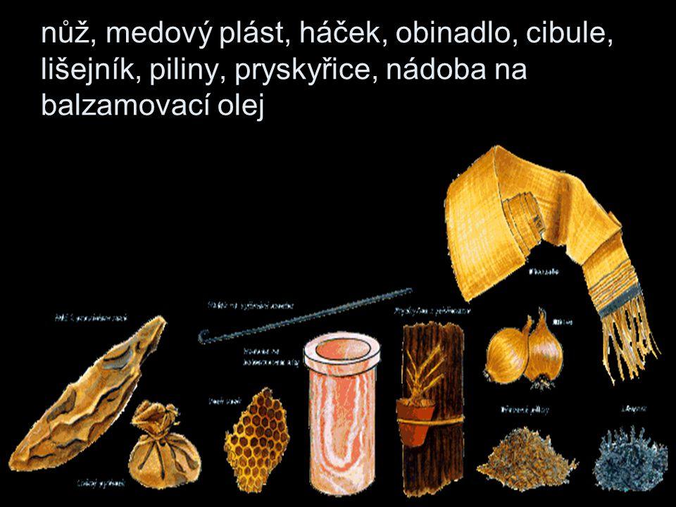 nůž, medový plást, háček, obinadlo, cibule, lišejník, piliny, pryskyřice, nádoba na balzamovací olej