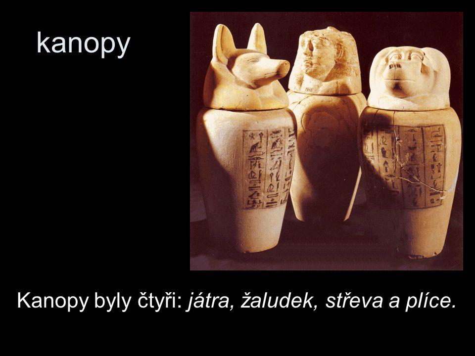 kanopy Kanopy byly čtyři: játra, žaludek, střeva a plíce.