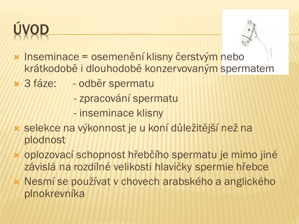 Úvod Inseminace = osemenění klisny čerstvým nebo krátkodobě i dlouhodobě konzervovaným spermatem. 3 fáze: - odběr spermatu.