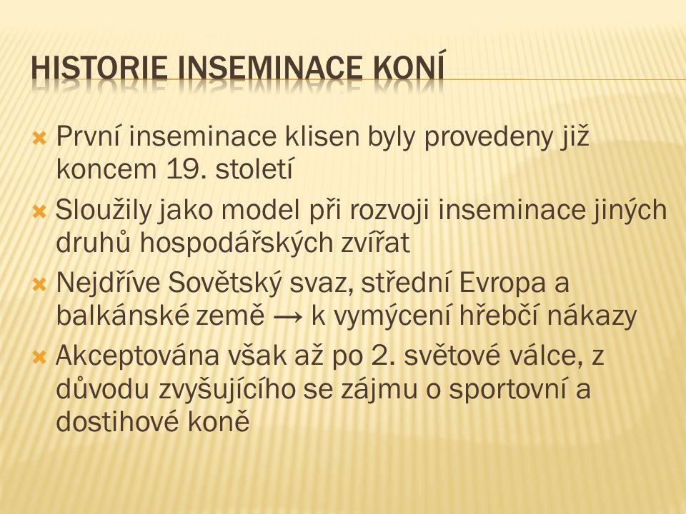 Historie inseminace koní