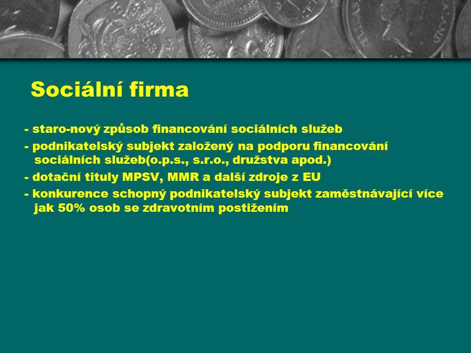 Sociální firma - staro-nový způsob financování sociálních služeb