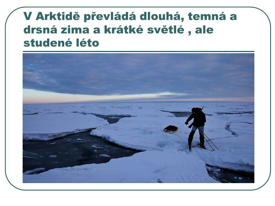 V Arktidě převládá dlouhá, temná a drsná zima a krátké světlé , ale studené léto