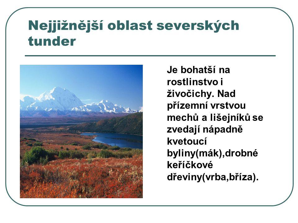 Nejjižnější oblast severských tunder