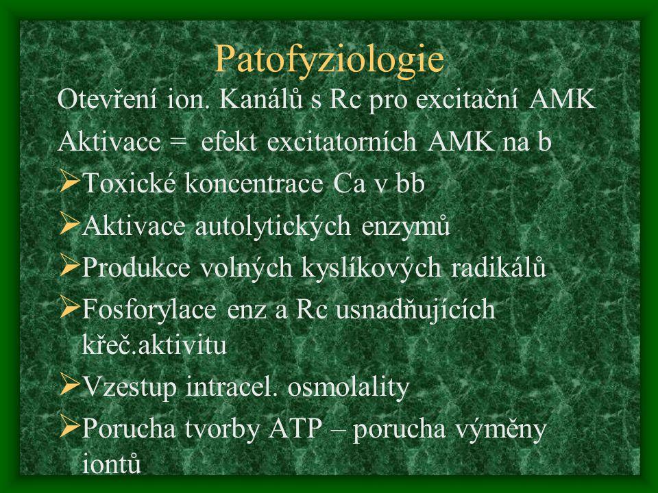 Patofyziologie Otevření ion. Kanálů s Rc pro excitační AMK