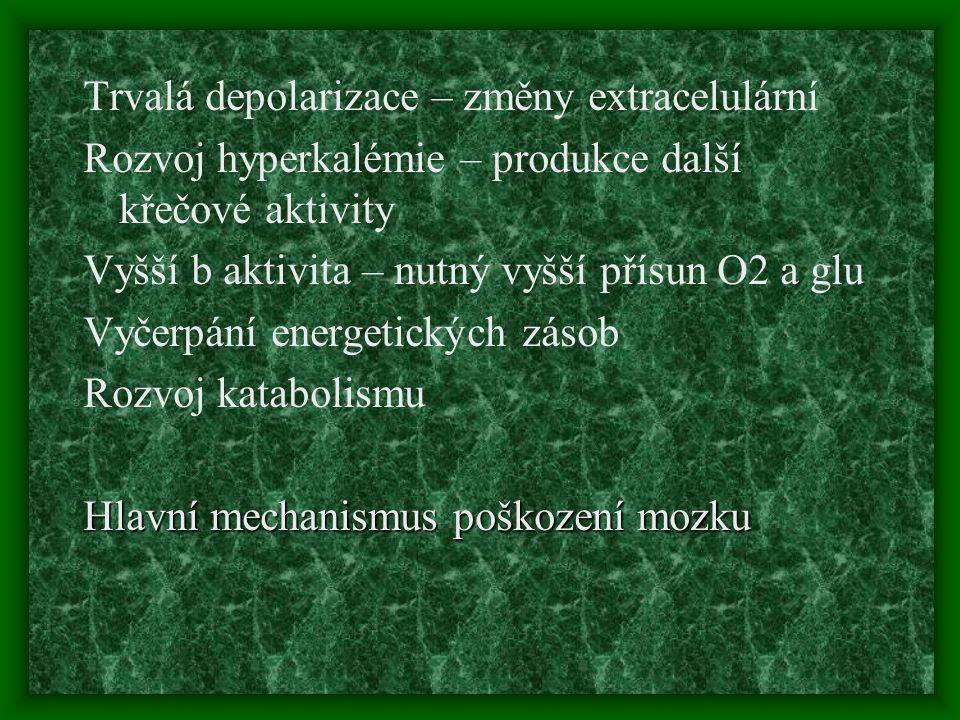 Trvalá depolarizace – změny extracelulární