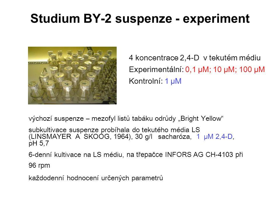 Studium BY-2 suspenze - experiment