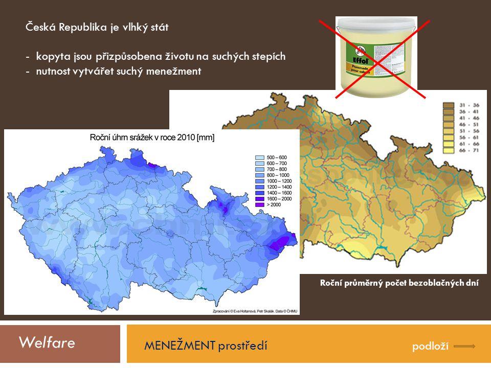 Welfare MENEŽMENT prostředí Česká Republika je vlhký stát