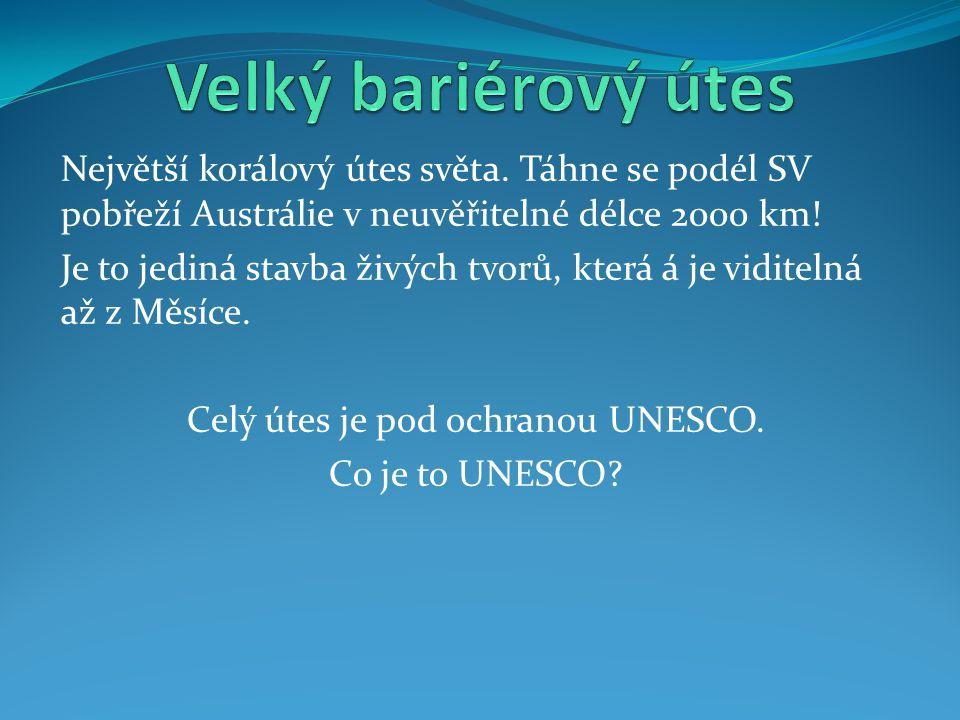 Celý útes je pod ochranou UNESCO.
