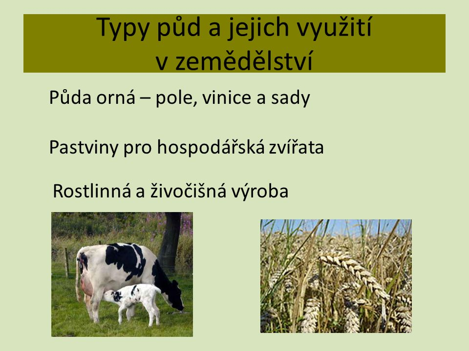 Typy půd a jejich využití v zemědělství