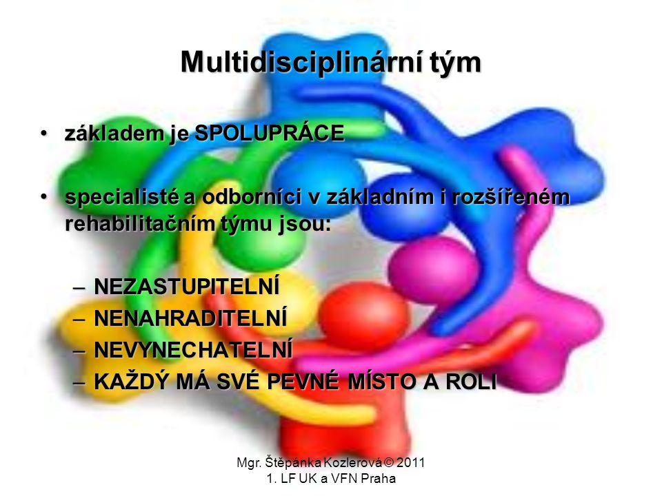Multidisciplinární tým