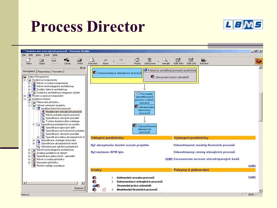 Process Director