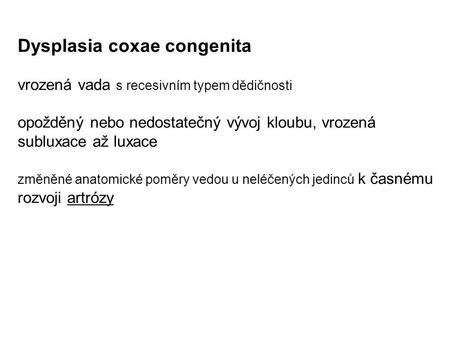 Dysplasia coxae congenita