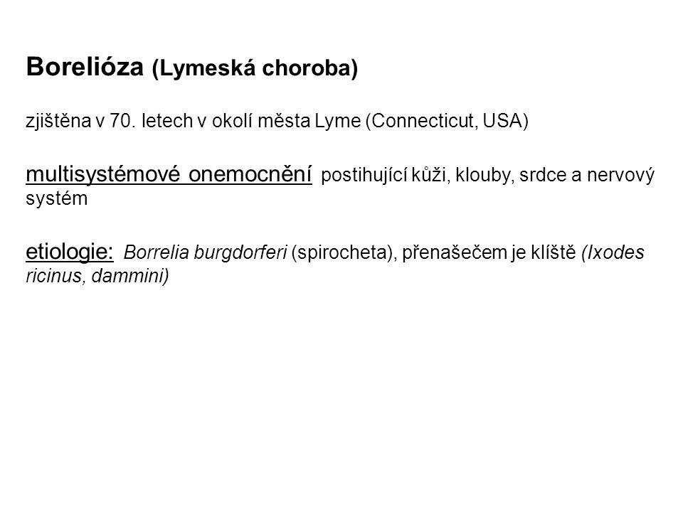 Borelióza (Lymeská choroba)