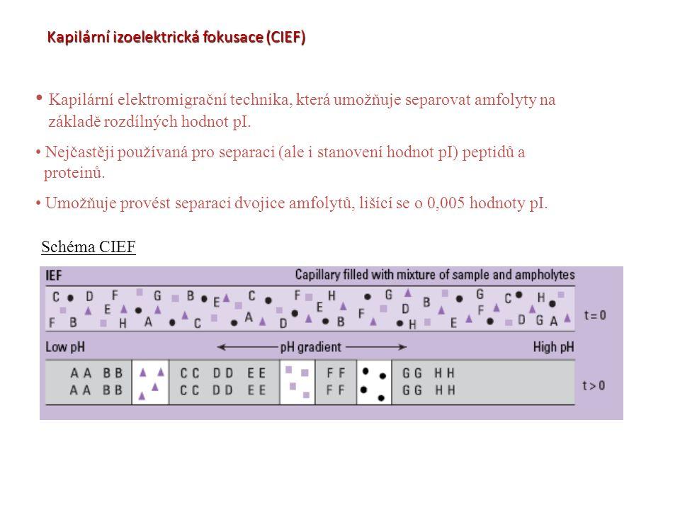 Kapilární izoelektrická fokusace (CIEF)