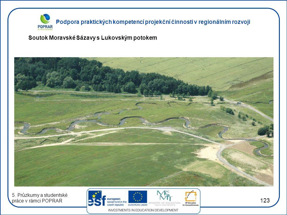 Soutok Moravské Sázavy s Lukovským potokem